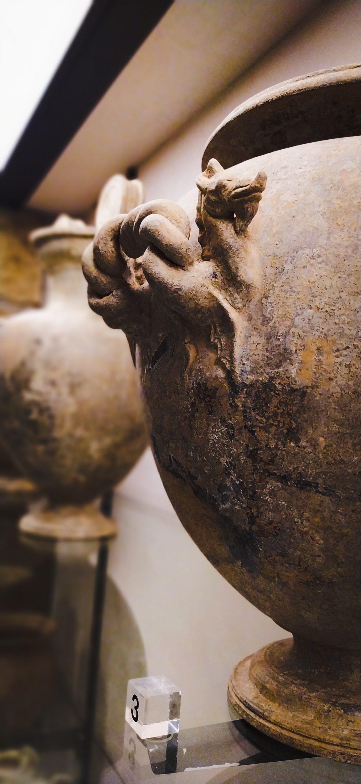 ceramica-argentata-etrusca-con-ippocampo-Museo-delle-Necropoli-Rupestri-Barbarano-Romano
